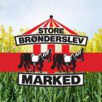 Masser af Kræmmere, gøglere og underholdning på Brønderslev Marked