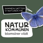Naturens Hus i Hirtshals er sat på stand by