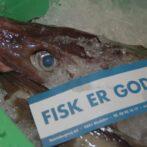 Minister foreslår nedfrysning af fisk for at undgå store tab