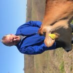 Landmand: Køerne skal have det lige så godt som mit personale