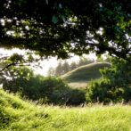 Naturpark Tolne – opstartsmøde 4. december
