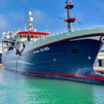Notbåde i Hirtshals havn